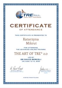Superwizja dla zaawansowanych z dr David Berceli TRE® 2020
