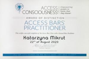 Access BARS Katarzyna Mikrut
