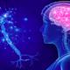 Ćwiczenia dla układu nerwowego